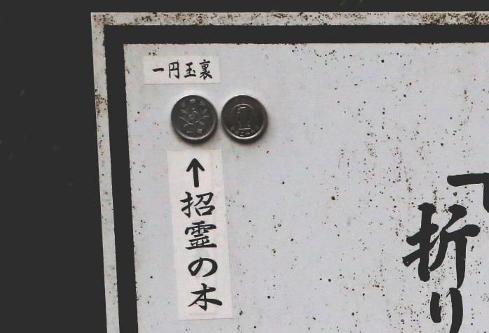 1円玉に描かれている招霊の木