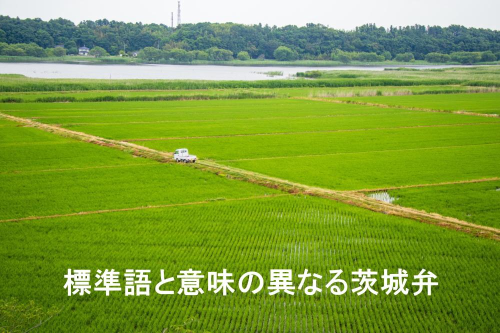 茨城県の田園風景と茨城弁に関するテキスト