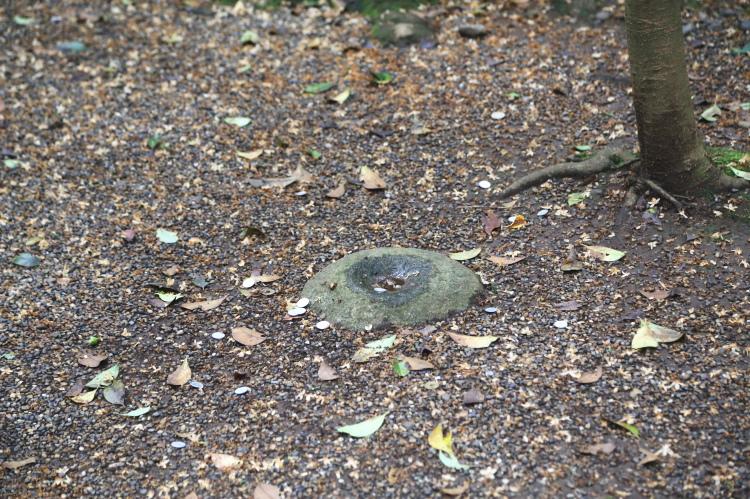 鹿島神宮の要石のアップ画像