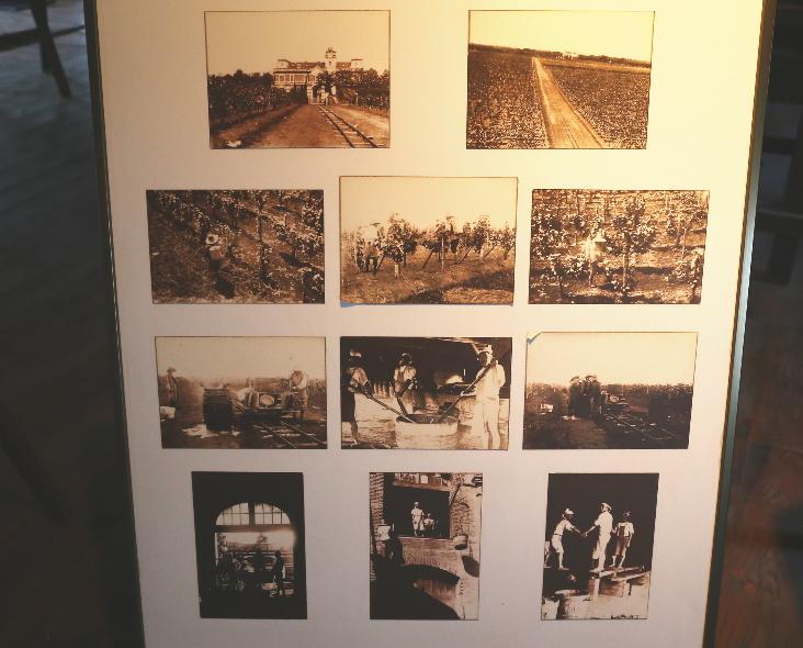 昭和6年から7年にかけての、牛久シャトーでの作業風景