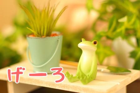カエルを茨城弁の「げーろ」で表現
