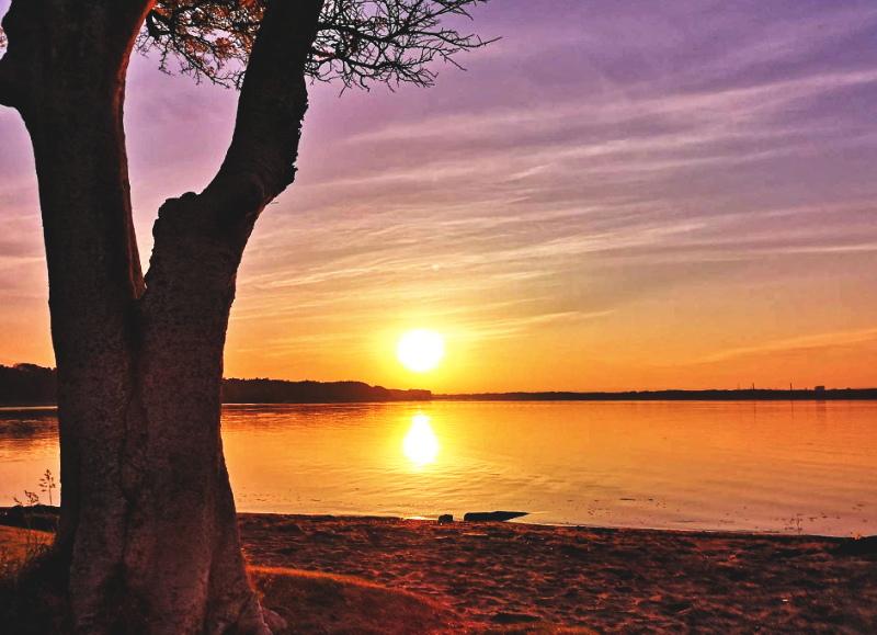 涸沼から見る日の出