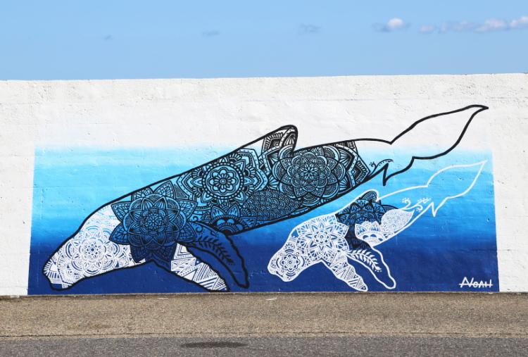 1000人画廊に書かれたクジラ