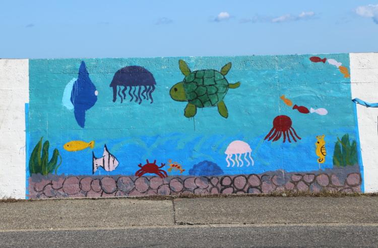 海の中を泳ぐ魚やカメ