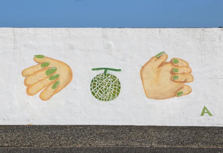手とメロン