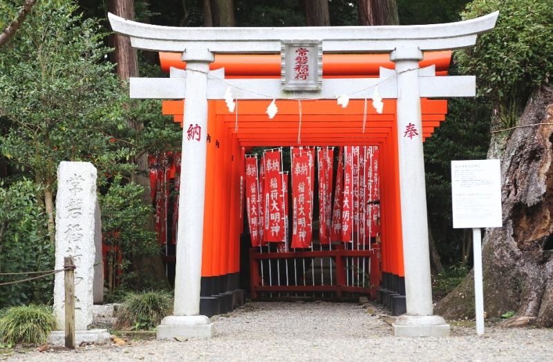 常磐稲荷神社の鳥居