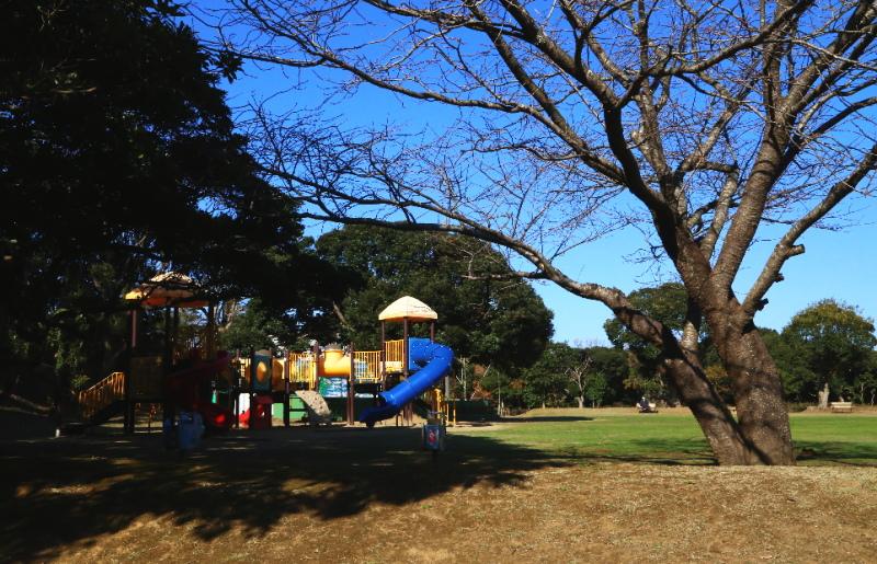 大野潮騒はまなす公園の多目的広場