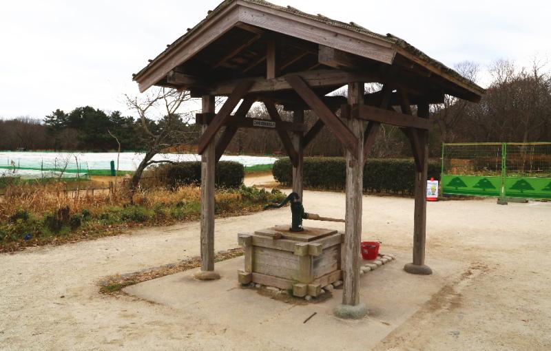 旧土肥家の庭先にある井戸