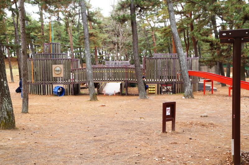 林間アスレチック広場の複合遊具