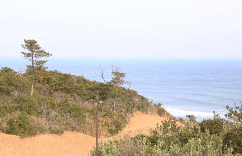 壮大な眺めの鹿島灘