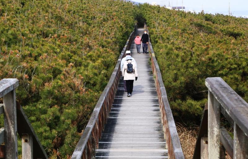 ウォーキングボードの上を歩く人たち