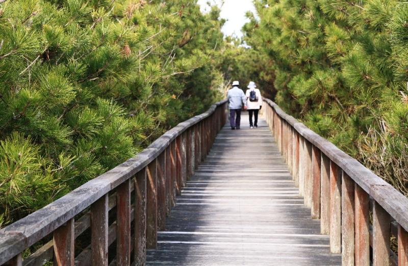 ウォーキングボードを並んで歩いている夫婦