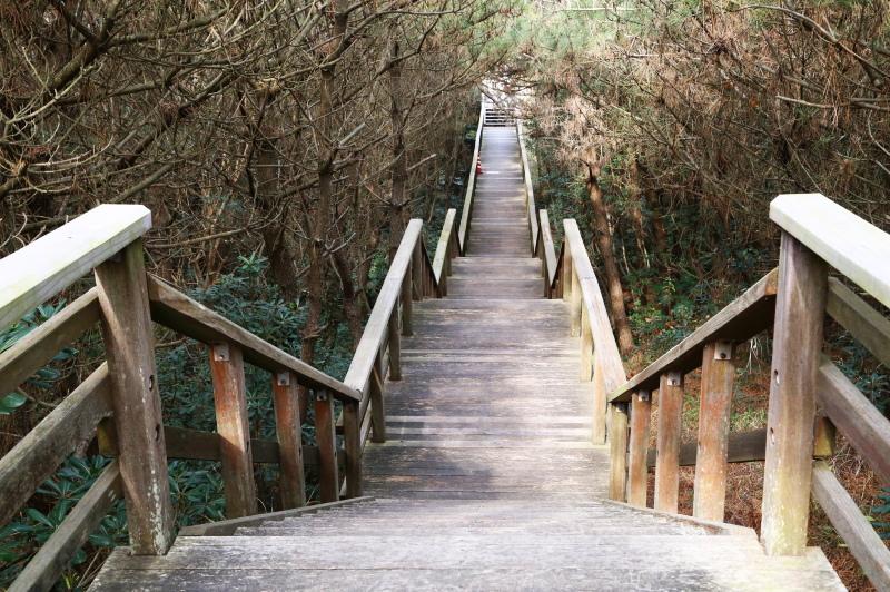 ウォーキングボードの途中にある階段