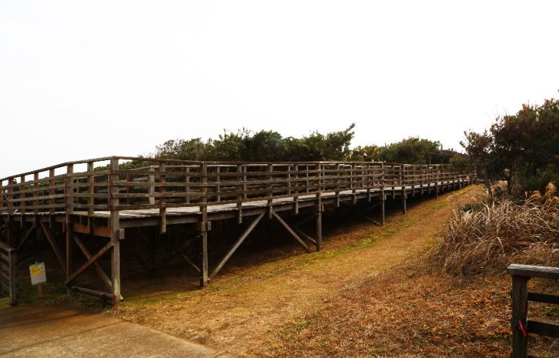 海岸方面に伸びている鹿島灘海浜公園のウォーキングボード