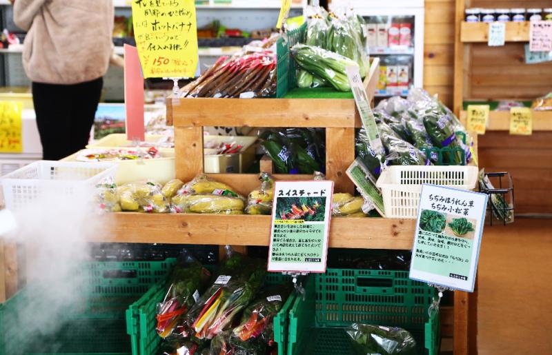 地元の野菜を売っている棚